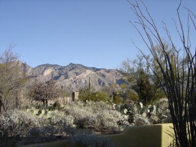 Arizona_2006_183